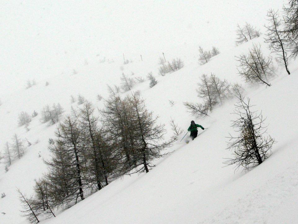 Perfect powder skiing