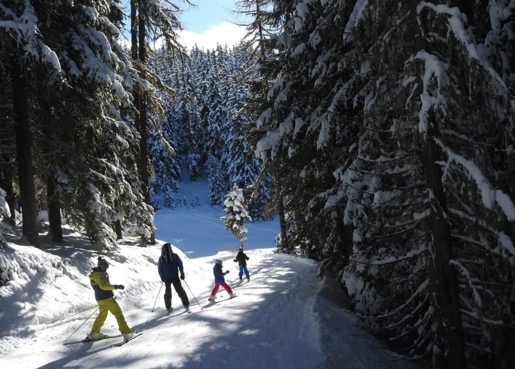 Les Arcs ski trees