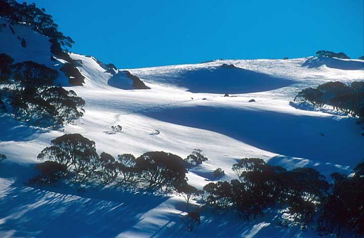 Selwyn-Snowfields