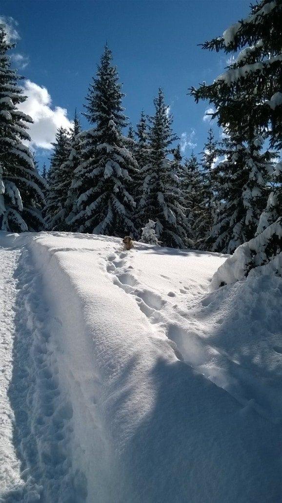 snow report meribel
